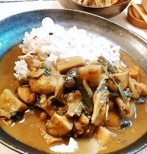 【筑前煮リメイク】根菜カレーと白菜のミルクスープ。