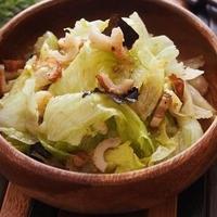レタスと竹輪のシャキシャキサラダ