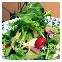 緑の野菜のごちそうサラダ✩ キューピー味わいすっきりドレッシングでつくるマリアージュ・サラダ