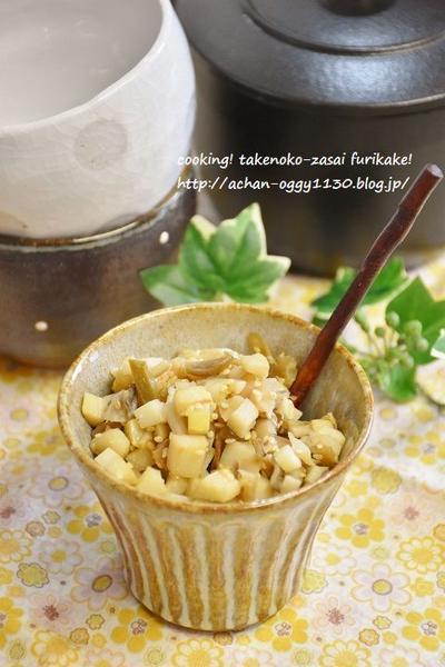 【レシピ】筍とザーサイのそぼろふりかけ&我が家のベランダ菜園