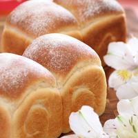 獺祭米粉のパンドミー