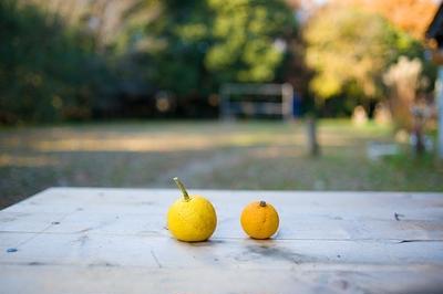 昆布料理・寒い時に食べたい、柚子香る、とろろ昆布と冬大根の和風スープスパゲッティ