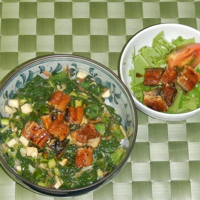うなぎのトロネバ丼 & うなサラダ