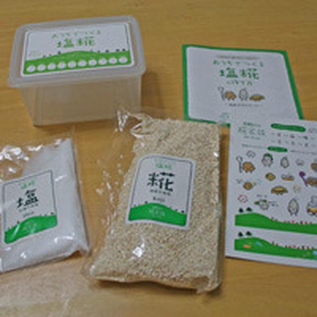 塩糀 手作りキットで自家製塩麹に挑戦