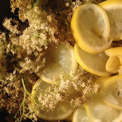 《スウェーデンの濃縮シロップジュース》エルダーフラワーでレモネード