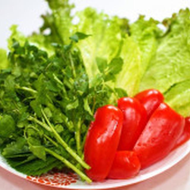 野菜!野菜!野菜たっぷりおうち焼肉