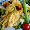 【季節のお野菜で ぶっかけ冷やし掻き揚げうどん】亀城庵さんのモニター料理です♪ by あきさん