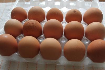 しゃくれの卵を衝動買い・・・胃潰瘍な日々9日目。