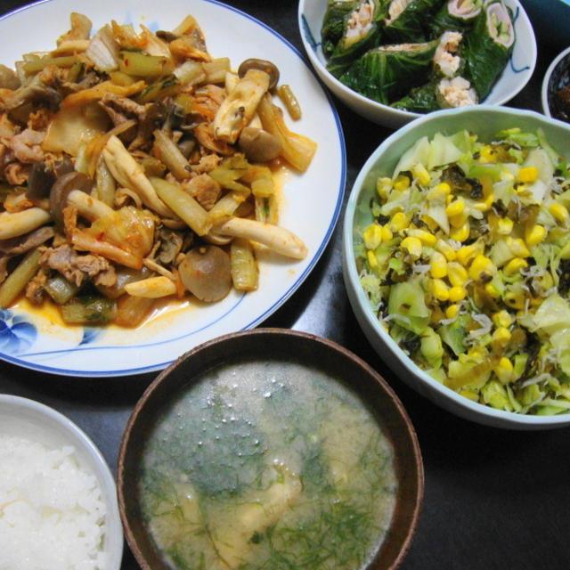 野菜メインの献立No.125 2011/6/30