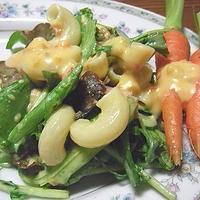 かぼちゃドレのマカロニサラダと豆腐ハンバーグ