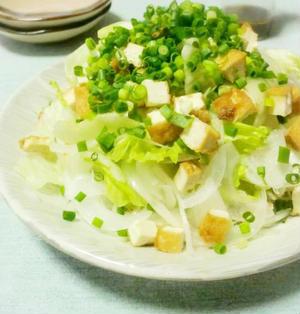 厚揚げと新たまねぎのサラダ