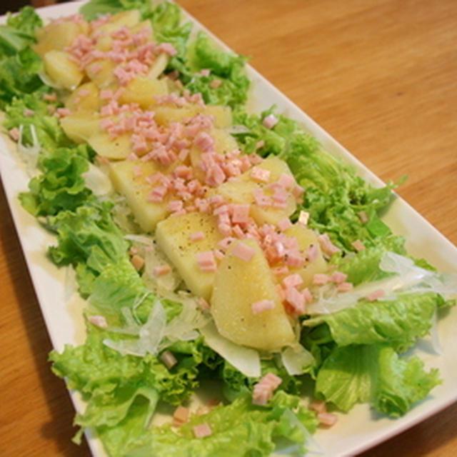 ゛玉ねぎドレッシングのサラダ