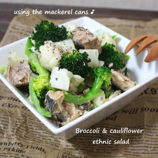 サバ缶で手軽に♪ブロッコリーとカリフラワーのエスニックサラダ