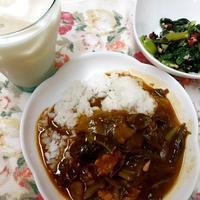 小松菜とツナの紫蘇わかめふりかけ和え キャベツのカレー  ぐんまクッキングアンバサダー(3期)