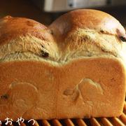レーズン食パン&丸パン