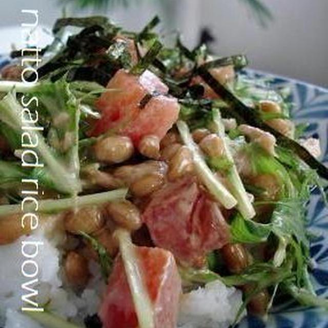 納豆サラダご飯