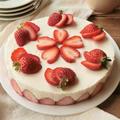 「合格おめでとう♪レアチーズケーキ」 by わんたるさん