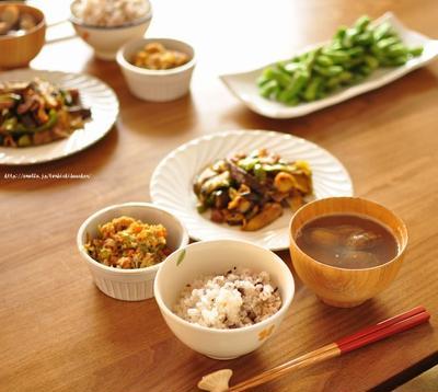 ナスと豚バラのカレぽん炒めと鯖と野菜のしっとりそぼろ、そしてお知らせ!