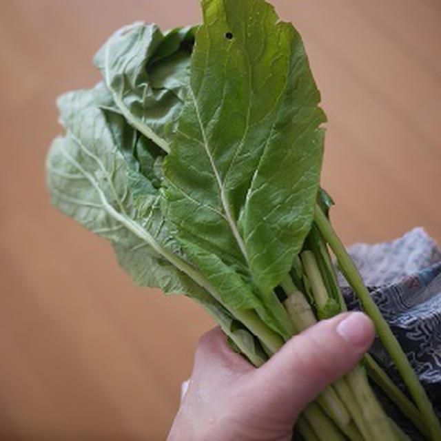 超簡単!小松菜レシピ 小松菜とひじきのポン酢和え