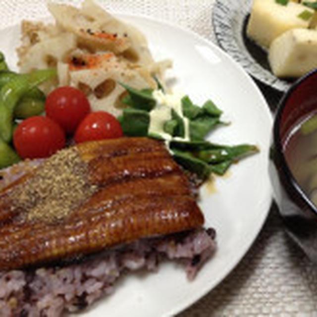 パパに毎日送る夕飯の写真たち。