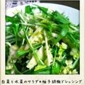 白菜と水菜のサラダ*柚子胡椒ドレッシング by YUKARIさん