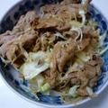 焼肉のたれでガッツリ肉サラダ