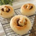 HB★栗のメープルパン