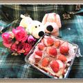 【イチゴのスコップケーキ】誕生日・クリスマスにも失敗しないオシャレな簡単スイーツ by チョピンさん