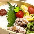 【お弁当】お弁当作り/お財布に優しい小間切れ肉/豚こま唐揚げ