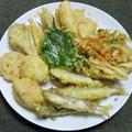 小アユとハモと野菜の天ぷら盛り合わせ