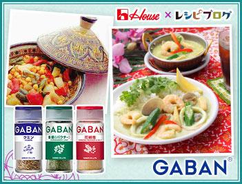 スパイスでお料理上手 スパイスで手軽に楽しもう♪人気のアジアン料理をおうちで!
