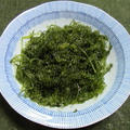 沖縄県産、生の海ぶどう