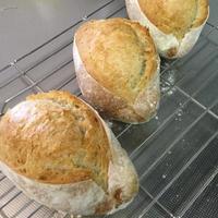 久しぶりのパン
