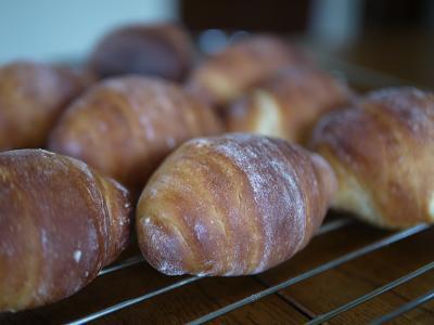 大豆粉パンのバターロール