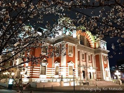 *寄り道は楽しい〜夜桜を眺めに♪