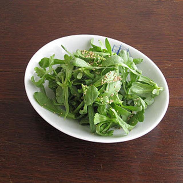 春菊の間引き菜のサラダ