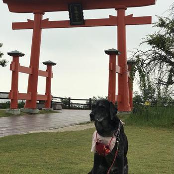 遅い夏休み。。九州旅行♪♪