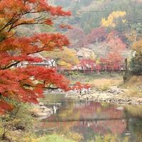 香嵐渓の紅葉と最近焼いたパン☆