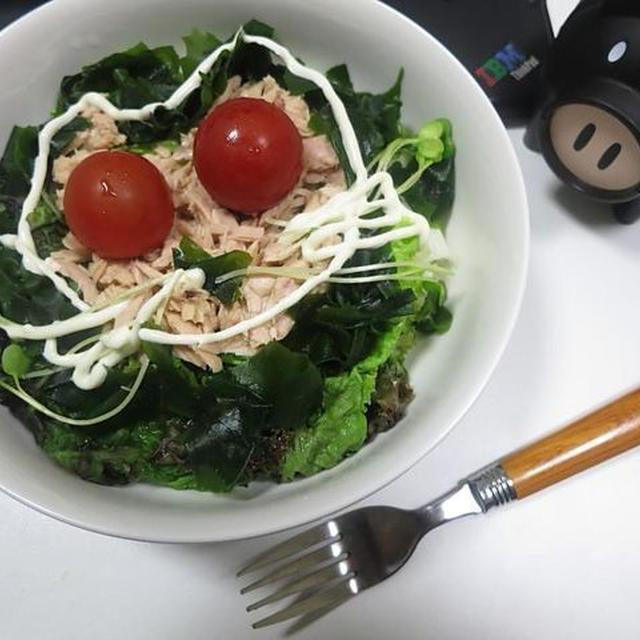 ツナサラダとご飯で、ねこまんま丼