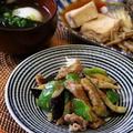 なすと豚肉の味噌炒め。同じ材料で麺つゆ炒め、くらしのアンテナ掲載。