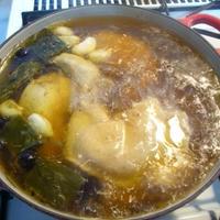 サルバチアを使って参鶏湯に挑戦!