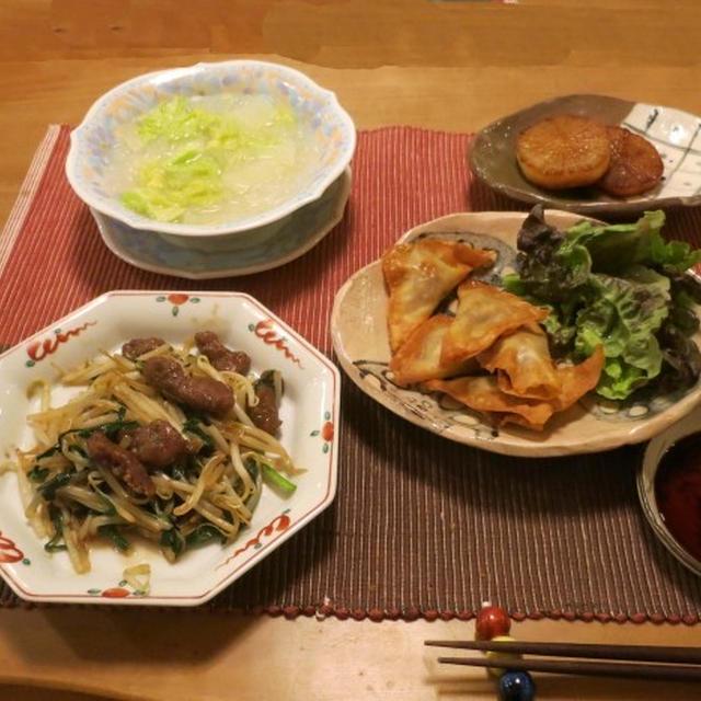 レバニラ&揚げワンタン~中華な晩ご飯 と ノースボールの花♪