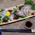 鱸(すずき)の捌き方 家庭で簡単調理法♪旬の魚を刺身でご堪能♪♪