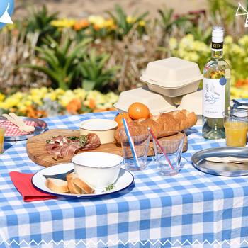 アウトドアブランドAIGLEピクニックイベントにてテーブルコーディネートします