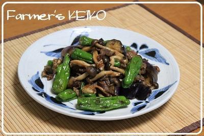 オニユリの花 ~レシピは『なすとししとうと牛肉の甘辛炒め』です~