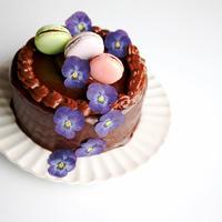 エディブルフラワー チョコケーキ タルト