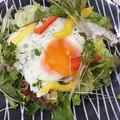 サラダににボリューム・・・簡単・節約!!フレッシュ野菜と目玉焼きのサラダ・手作りドレッシング