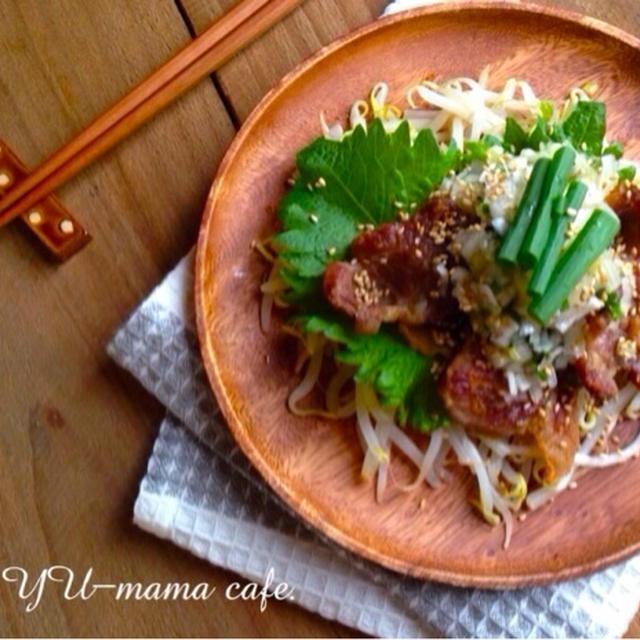 大葉ネギ塩の焼豚肉もやし。〜簡単節約おつまみ〜 良い休日を*\(^o^)/*