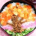きんぴらツナそぼろ☆桜満開ちらし寿司弁当