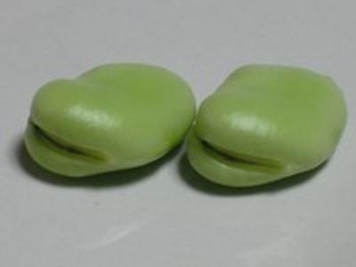 旬の野菜:そら豆♪ かき揚げ&サモサ風